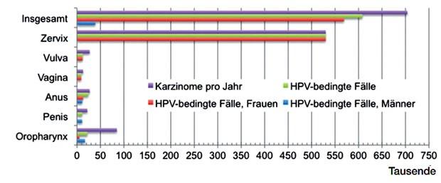 Hpv high risk ansteckung Der grosse HPV Test - PART II papilloma virus la femei